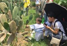 5月24日 - 學前班有機農莊遊