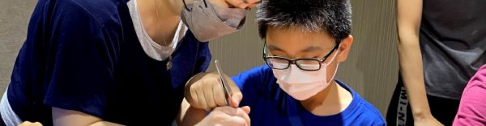 【親子活動: DIY迷你積木生態缸工作坊 26/6】